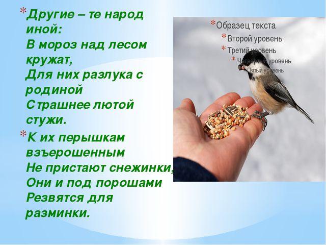 Другие – те народ иной: В мороз над лесом кружат, Для них разлука с родиной...