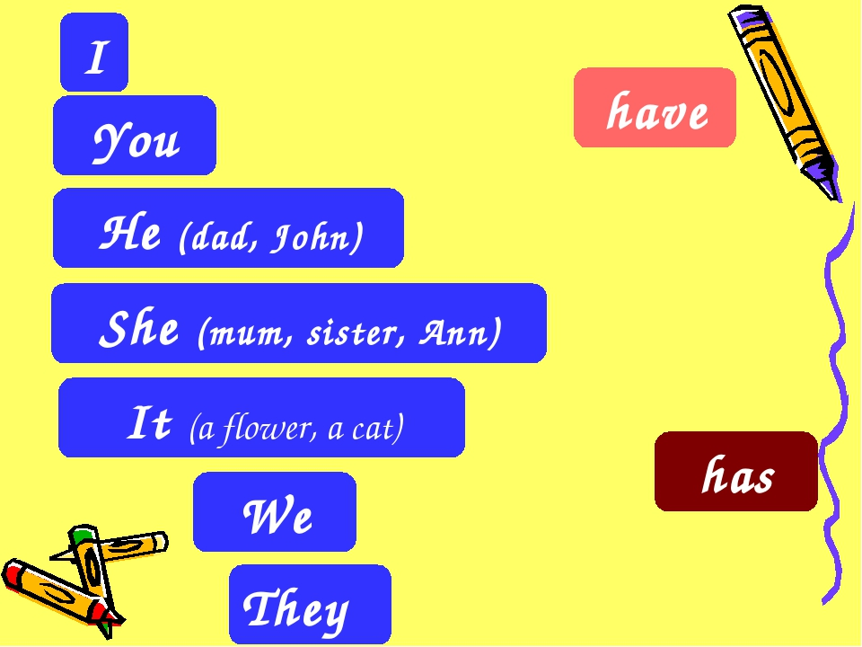 They I It (a flower, a cat) You He (dad, John) She (mum, sister, Ann) We have...