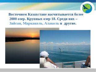 Восточном Казахстане насчитывается более 2000 озер. Крупных озер 18. Среди н