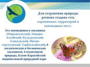 Для сохранения природы региона создана сеть охраняемых территорий и заповедн
