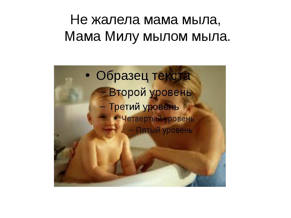 Не жалела мама мыла, Мама Милу мылом мыла.