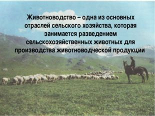Животноводство – одна из основных отраслей сельского хозяйства, которая зани