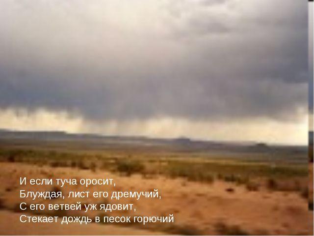 И если туча оросит, Блуждая, лист его дремучий, С его ветвей уж ядовит, Стека...