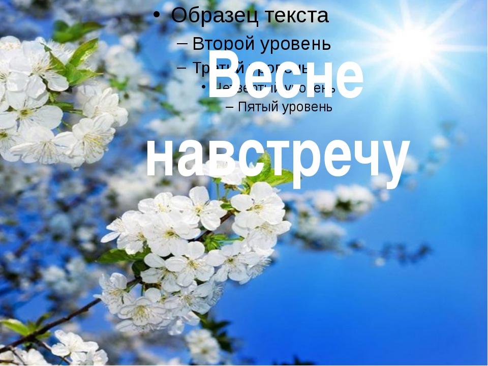 Весне навстречу
