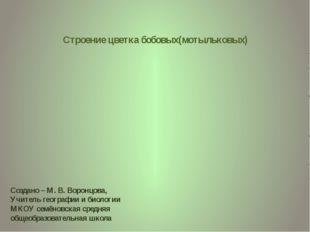 Строение цветка бобовых(мотыльковых) Создано – М. В. Воронцова, Учитель геогр