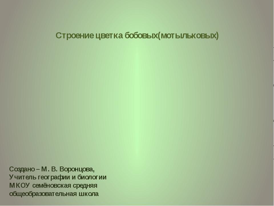Строение цветка бобовых(мотыльковых) Создано – М. В. Воронцова, Учитель геогр...