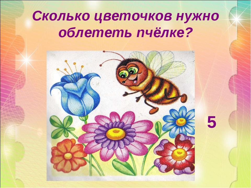 Сколько цветочков нужно облететь пчёлке? 5