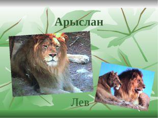 Арыслан Лев