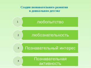 Стадии познавательного развития в дошкольном детстве 1 2 3 4