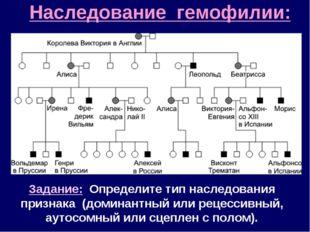 Наследование гемофилии: Задание: Определите тип наследования признака (домина