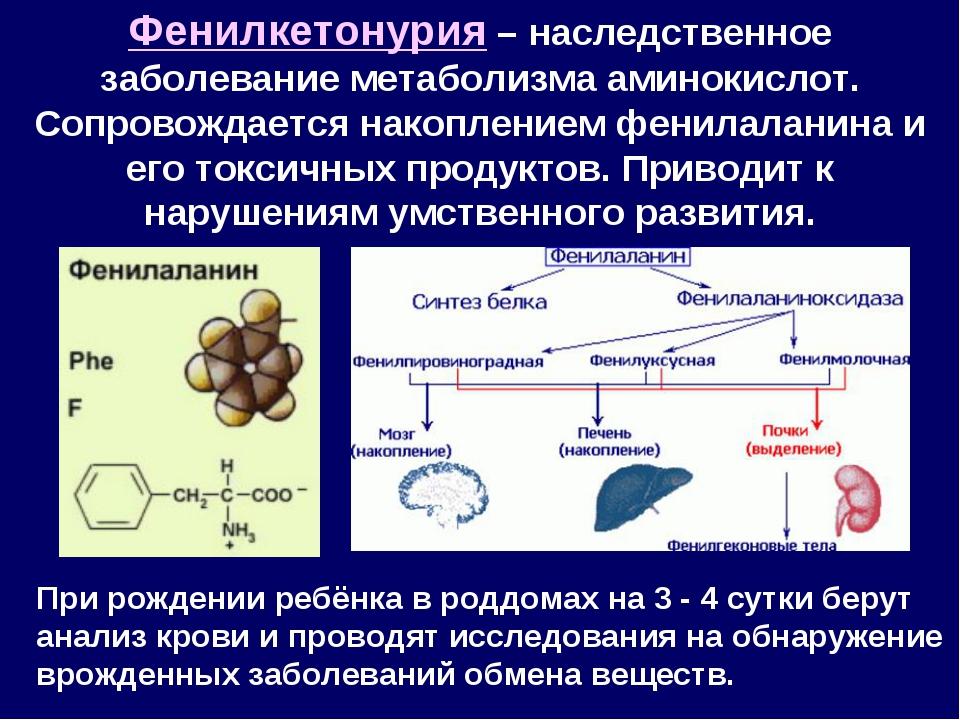 Фенилкетонурия – наследственное заболевание метаболизма аминокислот. Сопровож...