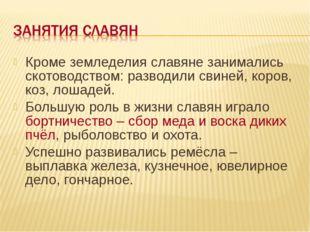 Кроме земледелия славяне занимались скотоводством: разводили свиней, коров, к
