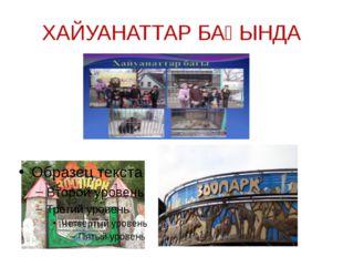 ХАЙУАНАТТАР БАҒЫНДА