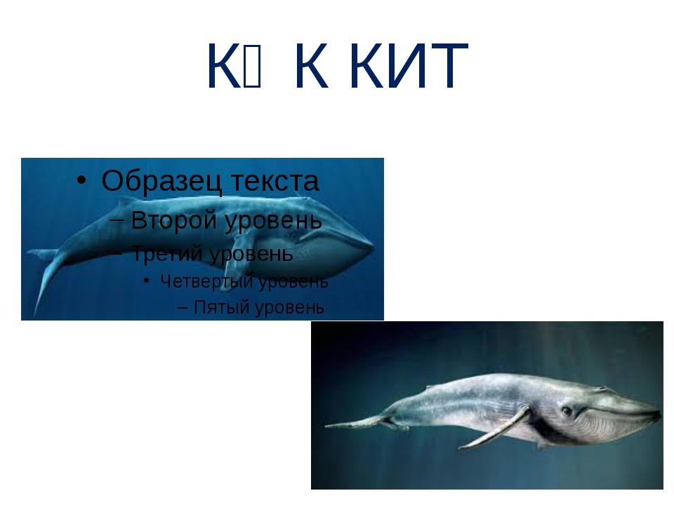 КӨК КИТ