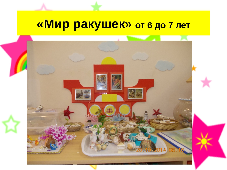 «Мир ракушек» от 6 до 7 лет