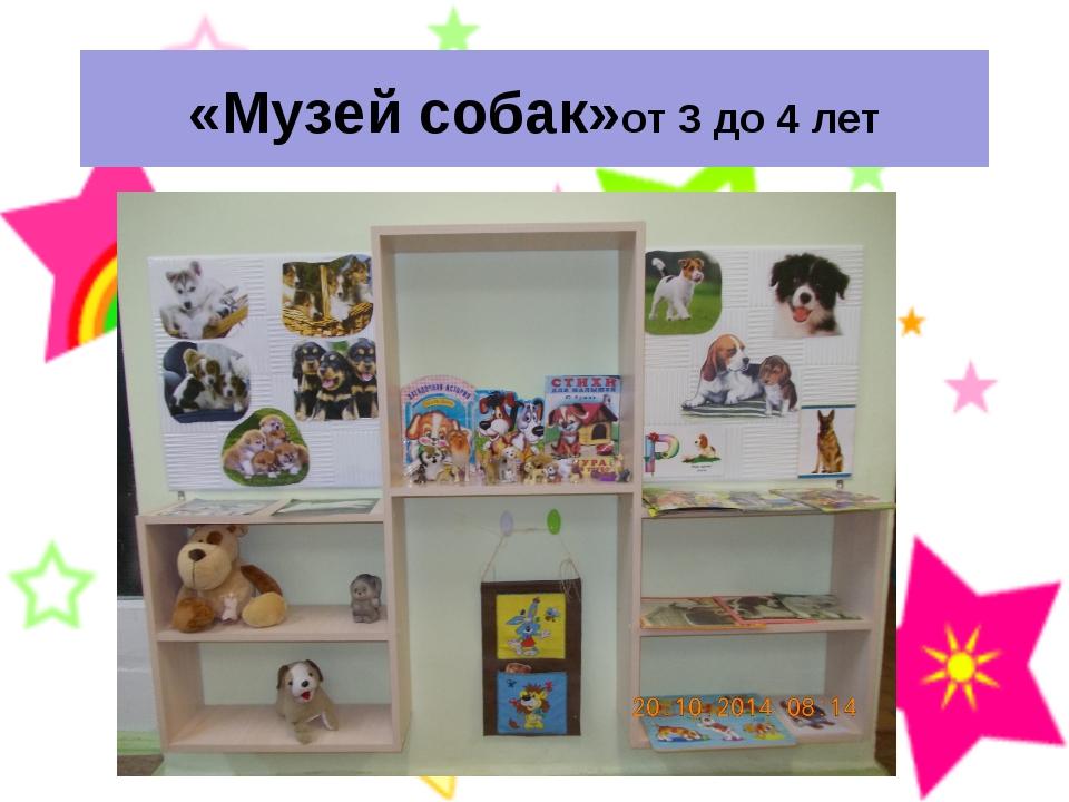 «Музей собак»от 3 до 4 лет