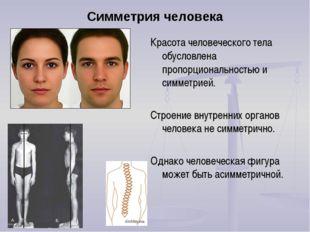Симметрия человека Красота человеческого тела обусловлена пропорциональностью