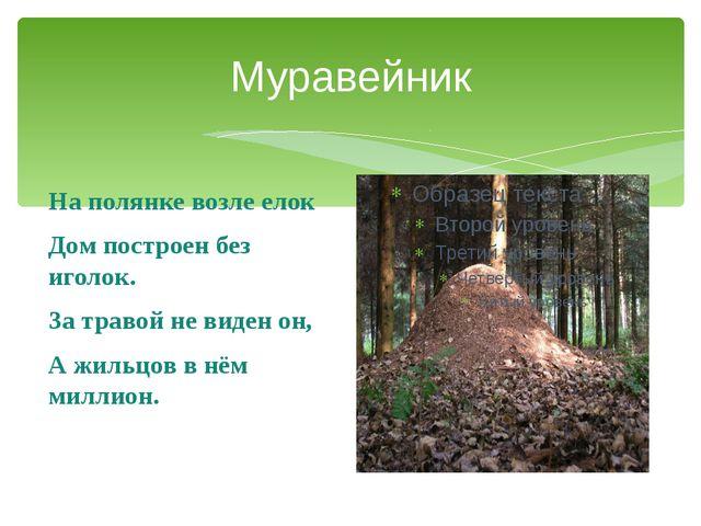 Муравейник На полянке возле елок Дом построен без иголок. За травой не виден...