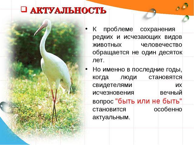 АКТУАЛЬНОСТЬ К проблеме сохранения редких и исчезающих видов животных человеч...