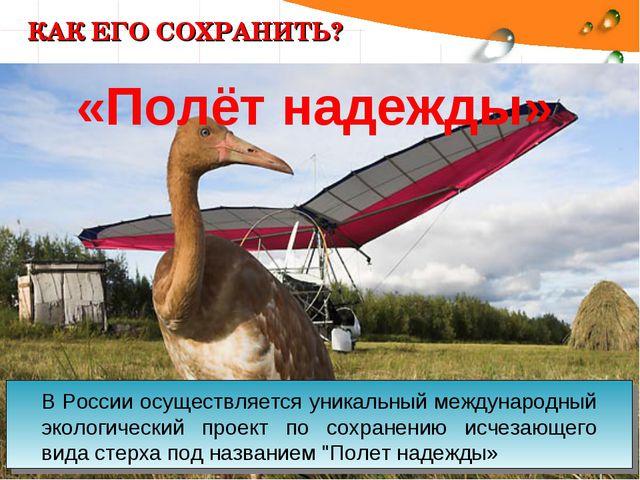 КАК ЕГО СОХРАНИТЬ? В России осуществляется уникальный международный экологиче...