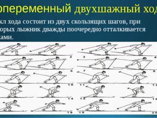 Попеременный двухшажный ход Цикл хода состоит из двух скользящих шагов, при к