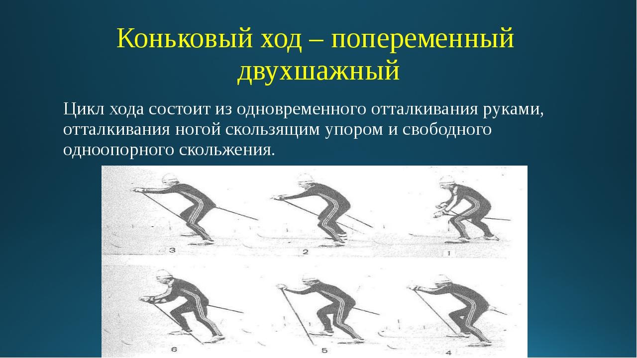 Коньковый ход – попеременный двухшажный Цикл хода состоит из одновременного о...