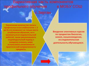 Вариативная часть компонентов профильного обучения в МОБУ СОШ с.Зирган.
