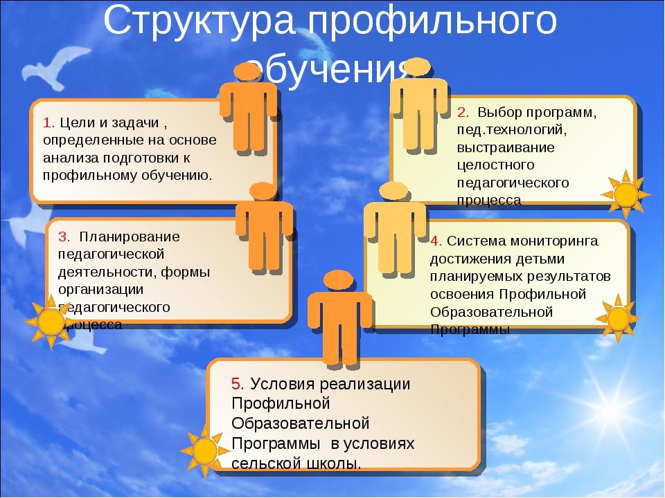 Структура профильного обучения