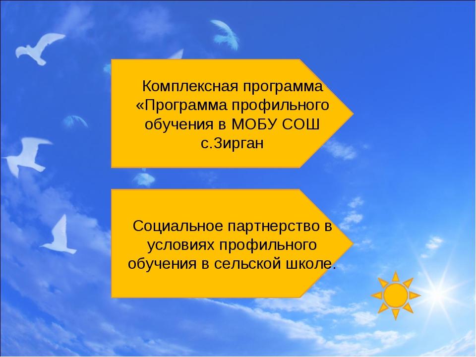 Комплексная программа «Программа профильного обучения в МОБУ СОШ с.Зирган Соц...