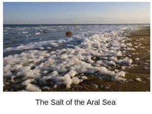 The Salt of the Aral Sea