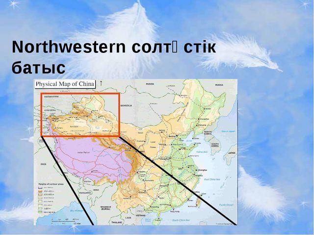 Northwestern солтүстік батыс
