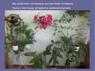 Мы свой класс озеленяем, все растения поливаем, Пыль с листочков обтираем и