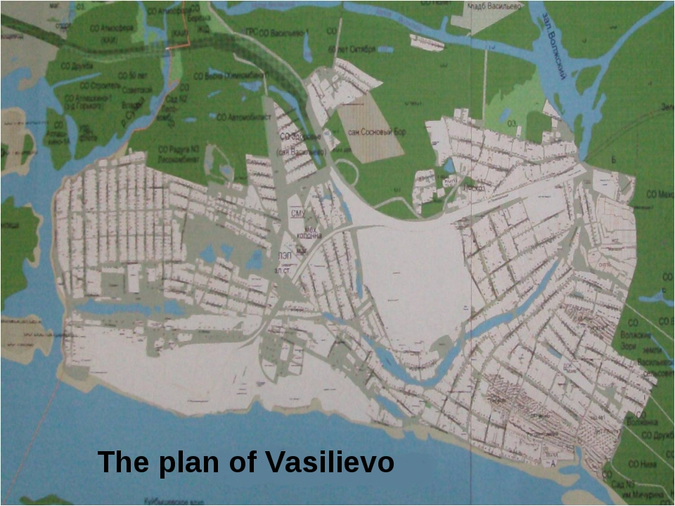 The plan of Vasilievo The plan of Vasilievo