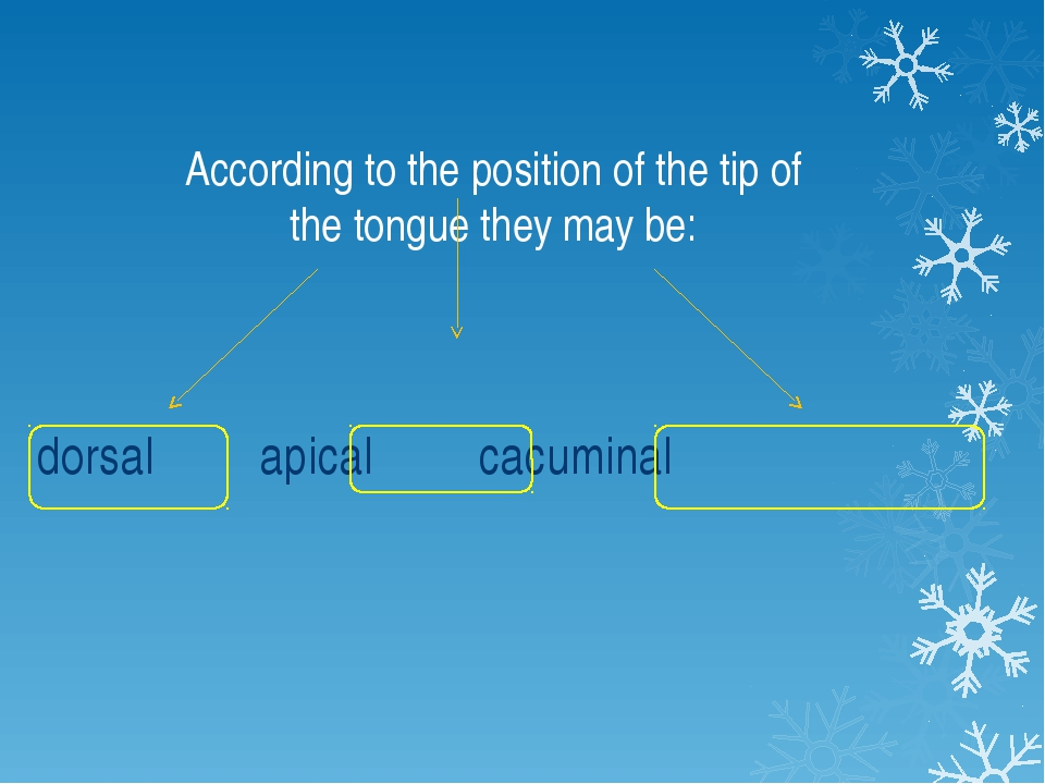 According to the position of the tip of the tongue they may be: dorsal apical...
