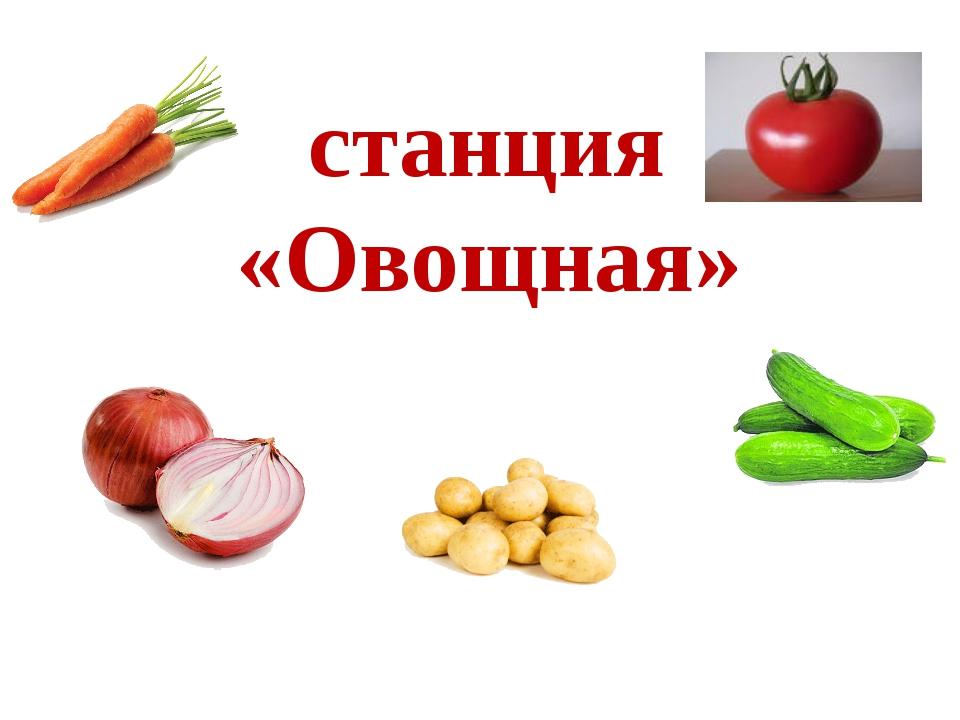 станция «Овощная»