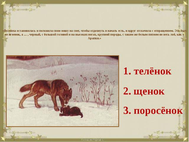 «Волчиха остановилась и положила свою ношу на снег, чтобы отдохнуть и начать...
