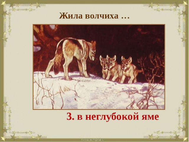 Жила волчиха … 1. в благоустроенной норе 2. в кустах 3. в неглубокой яме