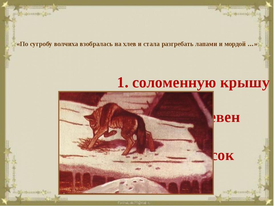 «По сугробу волчиха взобралась на хлев и стала разгребать лапами и мордой …»...