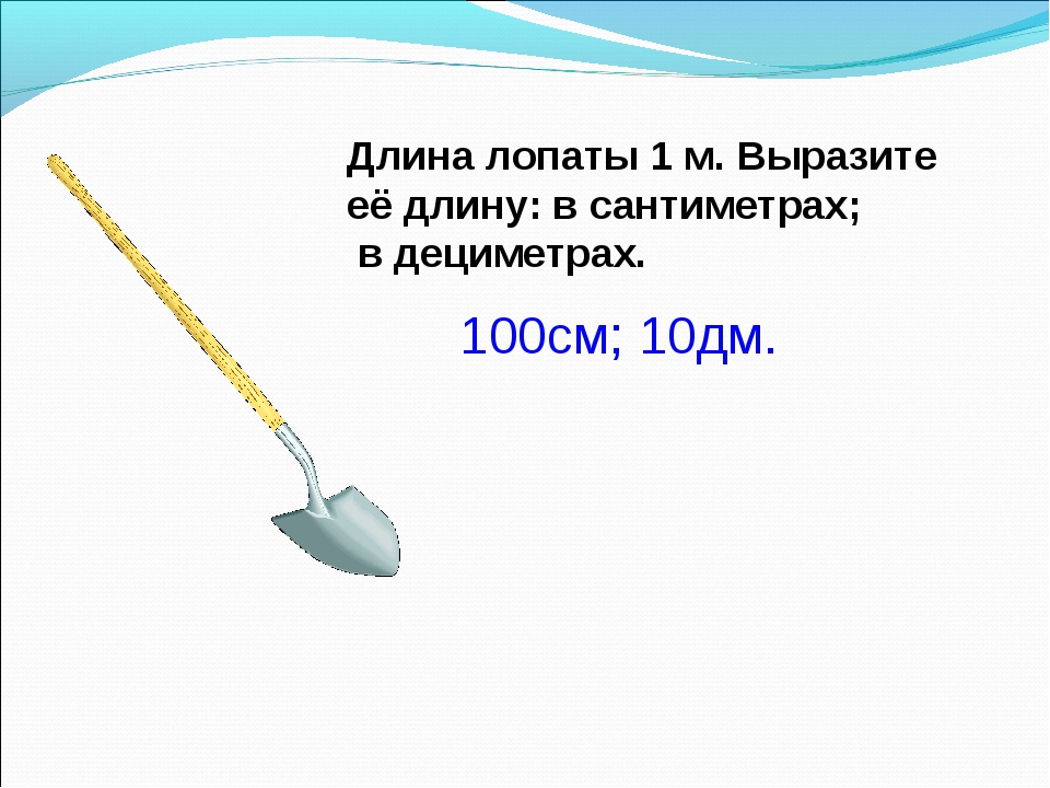 Длина лопаты 1 м. Выразите её длину: в сантиметрах; в дециметрах.  100см; 10...