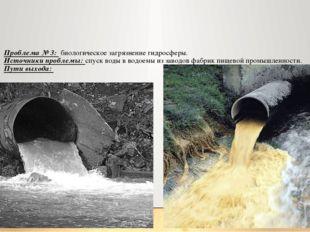 Проблема № 3: биологическое загрязнение гидросферы. Источники проблемы: спуск