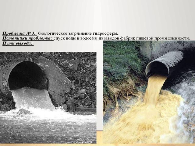 Проблема № 3: биологическое загрязнение гидросферы. Источники проблемы: спуск...