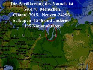Die Bevölkerung des Yamals ist 546170 Menschen. Chante-7915, Nenzen-24295, Se
