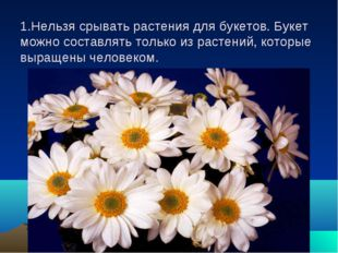 1.Нельзя срывать растения для букетов. Букет можно составлять только из расте