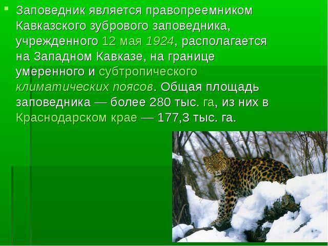 Заповедник является правопреемником Кавказского зубрового заповедника, учрежд...