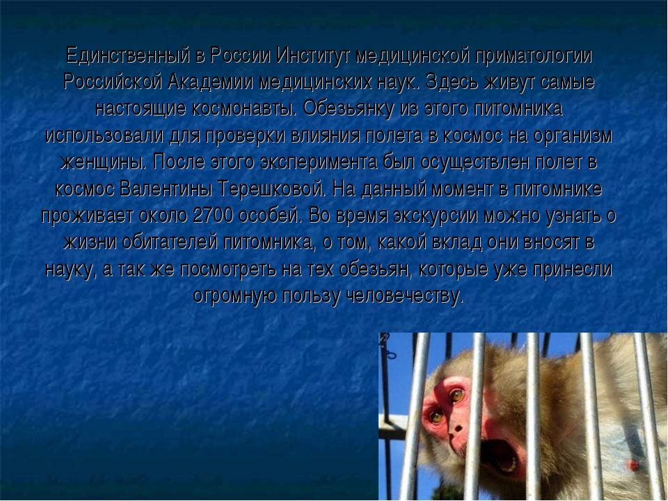 Единственный в России Институт медицинской приматологии Российской Академии м...
