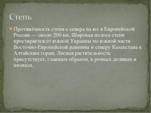 Протяжённость степи с севера на юг в Европейской России — около 200 км. Широк