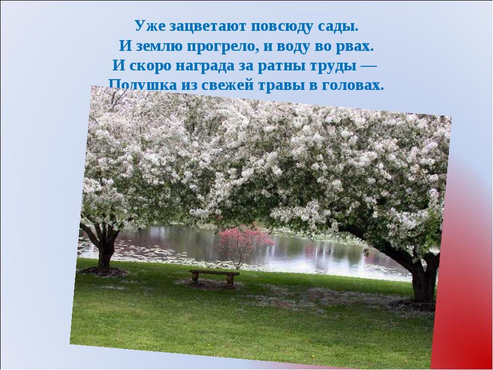 Уже зацветают повсюду сады. И землю прогрело, и воду во рвах. И скоро наград...