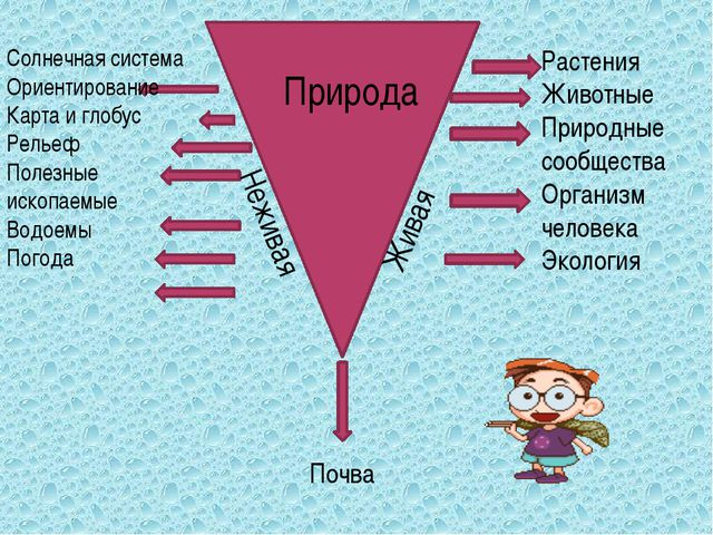 Солнечная система Ориентирование Карта и глобус Рельеф Полезные ископаемые В...