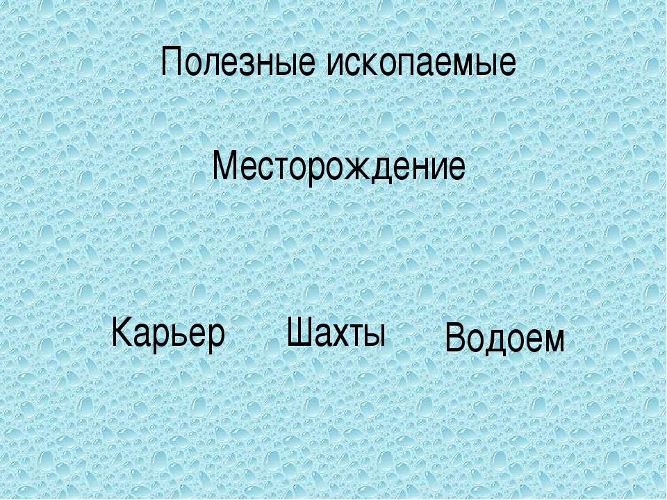 Полезные ископаемые Месторождение Карьер Шахты Водоем