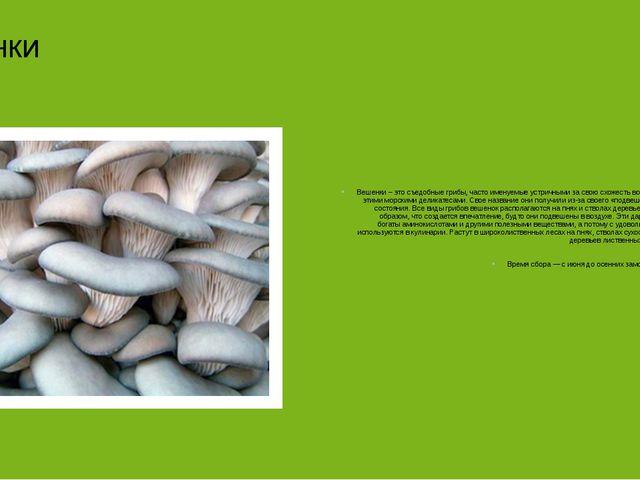 Вешенки Вешенки – это съедобные грибы, часто именуемые устричными за свою сх...